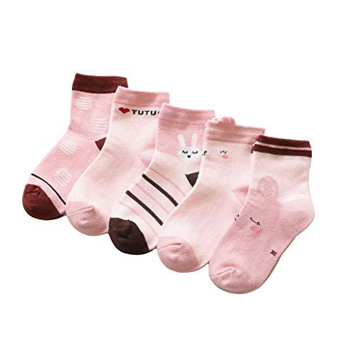 ZETIY Calcetines para bebé, niña, 5 pares, bonitos calcetines para los pies Haserosa 16/18 ES