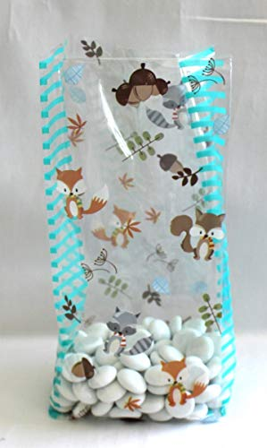 Fall Autumn Woodland Creatures Animals Fox Raccoon Squirrel Cello Cellophane Party Favor Treat Bags - Pack of 25 (Medium)