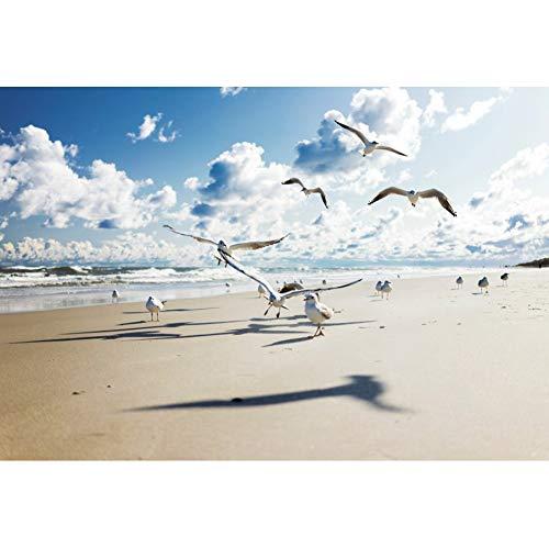 Yeele 3x2,5m Spiaggia estiva Fotografia Fondale Gabbiani Volare Sulla spiaggia Nuvole bianche Oceano Fotografia Sfondo Estate Festa Tropicale All'aperto Vacanza Foto Props