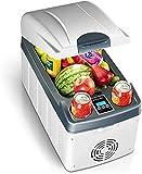 20L coche mini refrigerador horizontal de doble núcleo de...