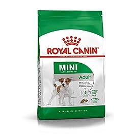 Royal Canin Dog Food Mini Adult