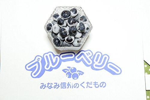 ガーデンベリー佐々木 冷凍 ブルーベリー 生食用 (2 キログラム)