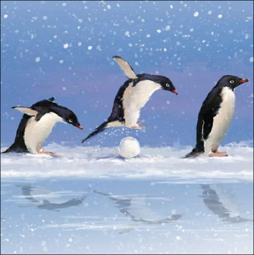 Pack of 5 Penguin Snow Fun British Heart Foundation Charity Christmas Cards