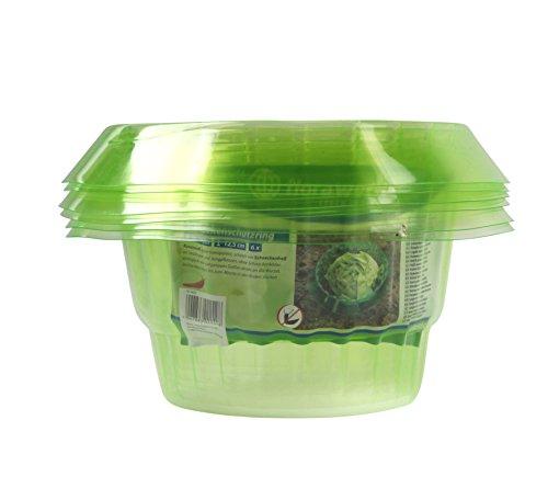 Schneckenschutzring 6er Set aus Kunststoff grün-transparent, schützt ihre Setzlinge und Jungpflanzen vor Schneckenfraß, Schneckenabwehr Ø 19-13 cm, Höhe 12,5 cm