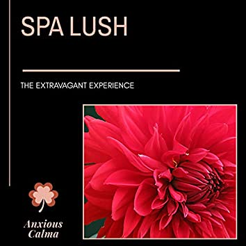 Spa Lush - The Extravagant Experience