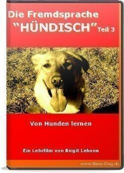 """Die Fremdsprache \""""Hündisch\"""" - Von Hunden lernen"""
