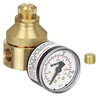 Pressure Regulator, 1/4 In, 0 to 125 psi from WATTS