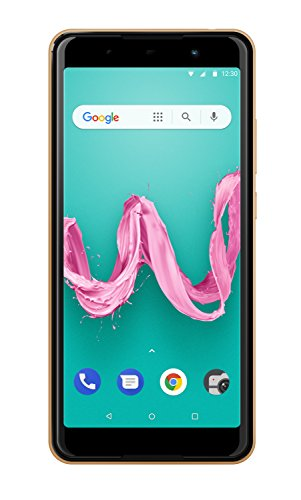Wiko Lenny 5 Smartphone (17,8 cm (5,7 Zoll) Display, 16GB interner Speicher, Android Oreo Go Edition) gold