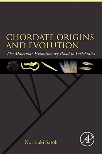 Chordate Origins and Evolution: The Molecular Evolutionary Road to Vertebrates