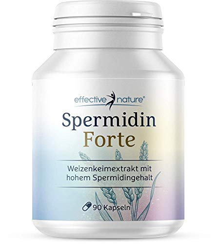 Spermidin Forte - Hochdosierter Weizenkeimextrakt - Ohne Soja - 1,02 mg Spermidin pro Tagesdosis - Mit Hoher Bioverfügbarkeit - 90 Vegane Kapseln