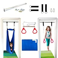 DreamGYM Doorway Sensory Swing Kit - Blue Compression Swing and Trapeze Bar with Red Gym Rings Combo