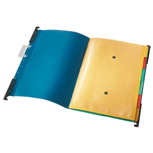 Leitz 18900035 Ordnungshängemappe Divide it Up, 6 Fächer, Colorspankarton, blau