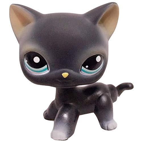 Pet Shop Lps gato Juguete De Pie Anime Figura Rara Pelo Corto Gato Egipcio Gris Azul Ojos Viejo Original Animal Colección Niños Regalo Juguetes