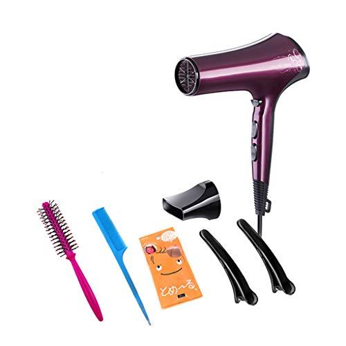 HURONG168 Secador de pelo, peluquería femenina del hogar, no hace daño a la peluquería, se come el abanico, sopla el avión, los vientos Tiempo de secado rápido y bajo ruido