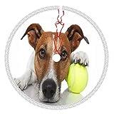 ZVEZVI Perro Pelota de Tenis Animales Deportes Recreación F