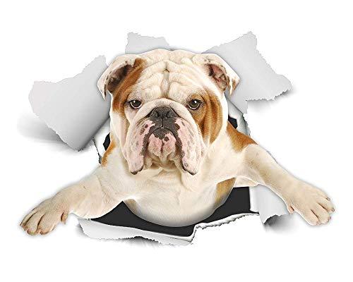Muursticker (doe-het-zelf) Happy Husky 3D Muursticker, Toilet, Koelkast, Auto Venster, Bumper Decoratie Sticker