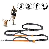 "Winkeyes Hands Free Retractable Dog Leash 5ft-8ft with Dual Bungees for Puppy, Small & Medium Dogs 110Ibs, Adjustable Waist Belt 27""-47"", Reflective Stitching Leash for Running Walking Hiking"