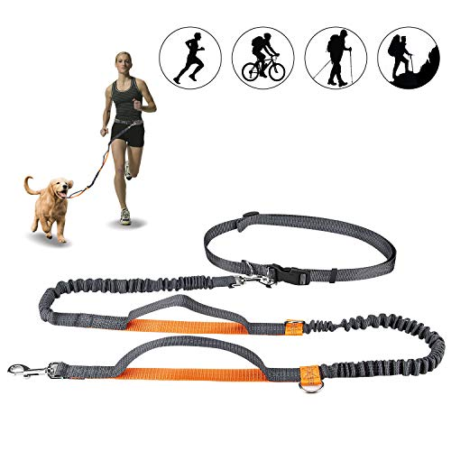 """Winkeyes Hands Free Retractable Dog Leash 5ft-8ft with Dual Bungees for Puppy, Small & Medium Dogs 110Ibs, Adjustable Waist Belt 27""""-47"""", Reflective Stitching Leash for Running Walking Hiking"""