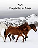 2021 Weekly and Monthly Planner: Wild Horses In Wyoming-Colorado Border in the Snowy Winter - Monthly Calendar with U.S./UK/ ... in.-Nature Animals For Work Business School