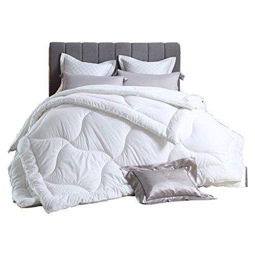 MMM Quilt Core Double Hiver Garder Chaud Épaississement Quilts Combo Literie (taille : 220 * 240cm(4.8kg))