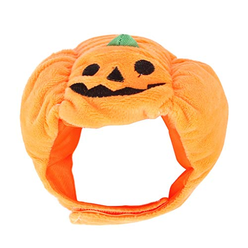 WT-DDJJK Cats Snood, Gato Disfraz de Halloween Mascota Calabaza Sombrero Ropa de Halloween Sombreros Fiesta Vestir