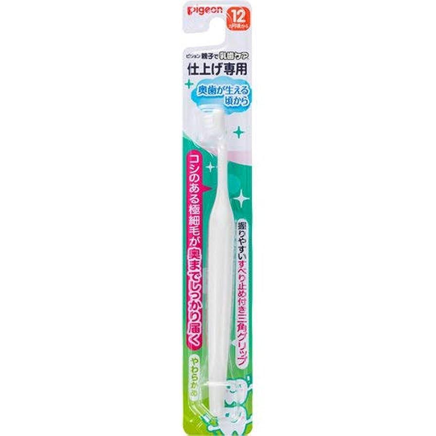 アナニバー線形保証仕上げ専用歯ブラシ 奥歯が生える頃から