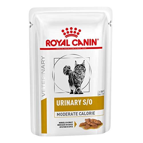48x85 g Royal Canin Urinary Moderate Calorie Morsels in Gravy Frischebeutel für Katzen