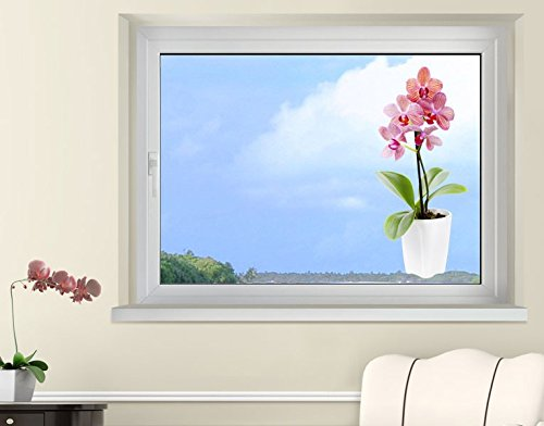Klebefieber Fenstersticker Pinke Orchideen B x H: 27cm x 60cm