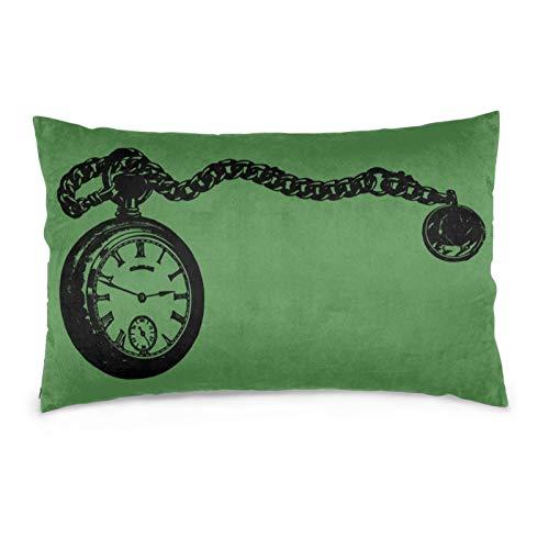 VVSADEB Funda de almohada para reloj de bolsillo, 20 pulgadas x 30 pulgadas, funda de almohada con cremallera, suave y acogedora, arrugas, tamaño estándar, 1 paquete