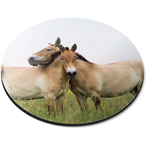 Ronde muismat - Przewalski's Paarden Rijden Kantoor Gift