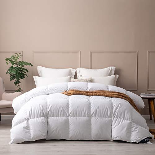 Topllen All Season Down Comforter Twin Size