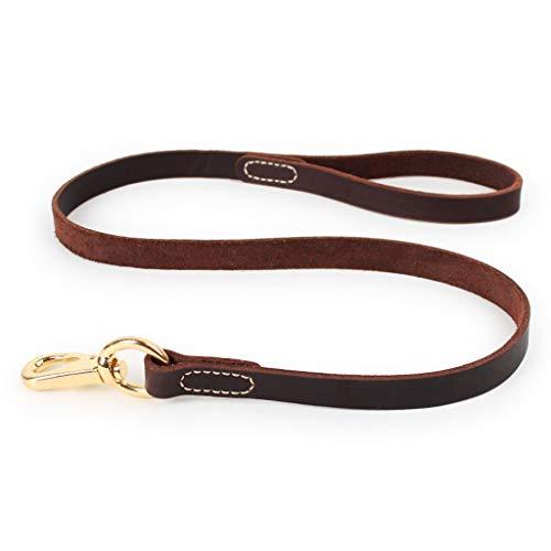 Huisdier hondenriem hondenketting kleine hond Middelste hond hondenriem ketting touw hondenhalsband hondenriem hond huisdierbenodigdheden