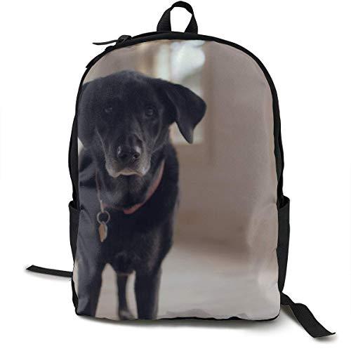 Mochilas Mochila Escolar universitaria Mochila para portátil Mochila para Viajes Senderismo Mochila para Acampar, Collar para Perro Labrador Retriever