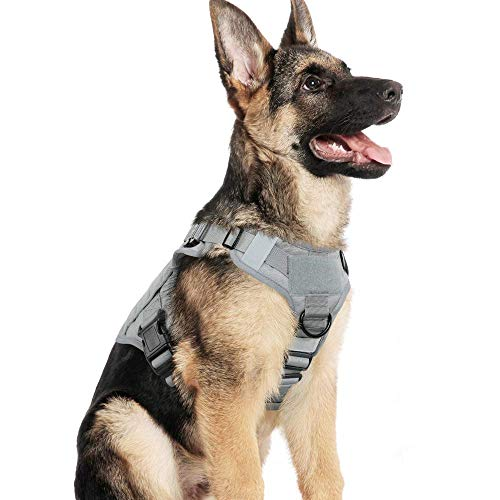 "rabbitgoo Tactical Dog Harness Vest Large with Handle, Military Dog Harness Working Dog Vest with MOLLE & Loop Panels, No-Pull Adjustable Training Vest, Grey, Large Size, Chest (31.5-41.3"")"