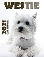 Westie 2021 Calendar