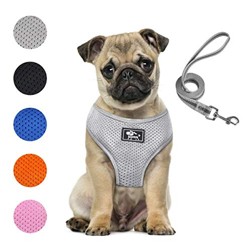 Puppy Harness and Leash Set - Dog Vest Harness for Small Dogs Medium Dogs- Adjustable Reflective Step in Harness for Dogs - Soft Mesh Comfort Fit No Pull No Choke