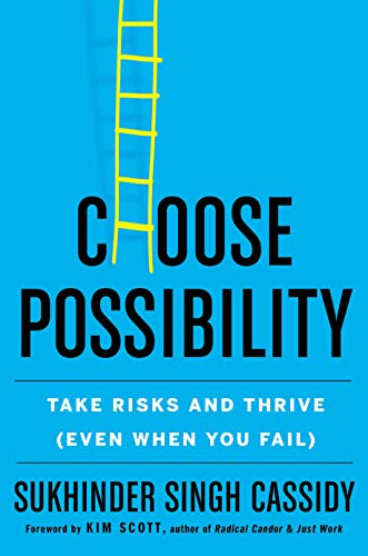 Choose Possibility: Take Risks and Thrive (Even When You Fail)