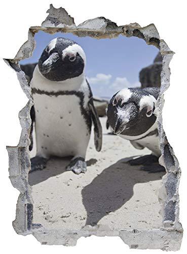 Pinguin Neugier Strand Meer Wandtattoo Wandsticker Wandaufkleber E0552 Größe 46 cm x 62 cm