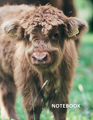 College Ruled Notebook: Aberdeen Angus Terrific Composition Book Daily Journal Notepad Diary...