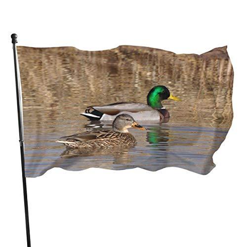 Patry vlag, Beauty Mallard Eend Vlaggen Duurzame Huis Vlag Fade Resistant Outdoor Banner Kwaliteit Yard Vakantie en Seizoensgebonden Decoratieve Vlaggen voor College Weekend Sport 2020-3X 5 Ft