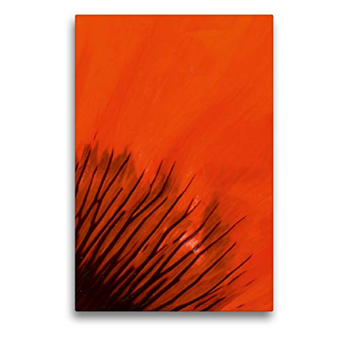 CALVENDO Premium Textil-Leinwand 50 x 75 cm Hoch-Format Blütenblatt im Detail, Leinwanddruck von Brigitte Deus-Neumann