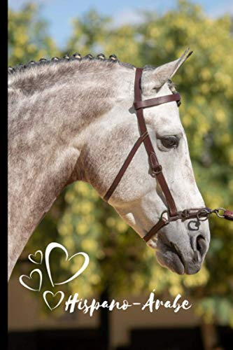 Hispano-Árabe Horse Notebook For Horse Lovers: Composition Notebook 6x9' Blank Lined Journal