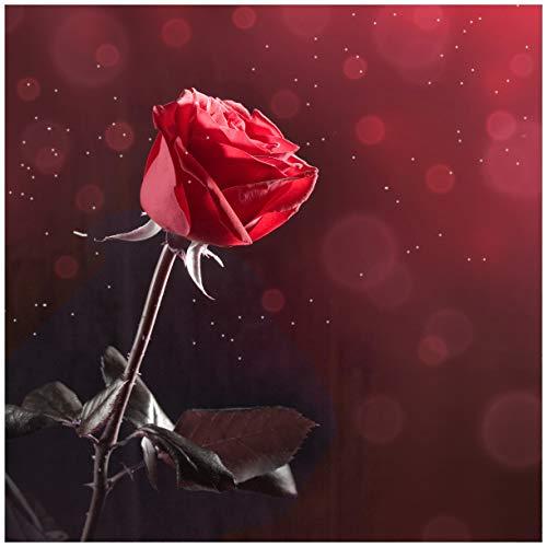 Wallario Acrylglasbild Rote Rose Single - 50 x 50 cm in Premium-Qualität: Brillante Farben, freischwebende Optik