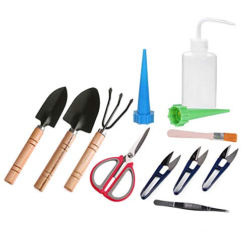ZELARMAN Bonsai Tools Kit Set-12 pcs Succulent Mini Garden Tools for Bonsai Tree Pruning Trimming Watering