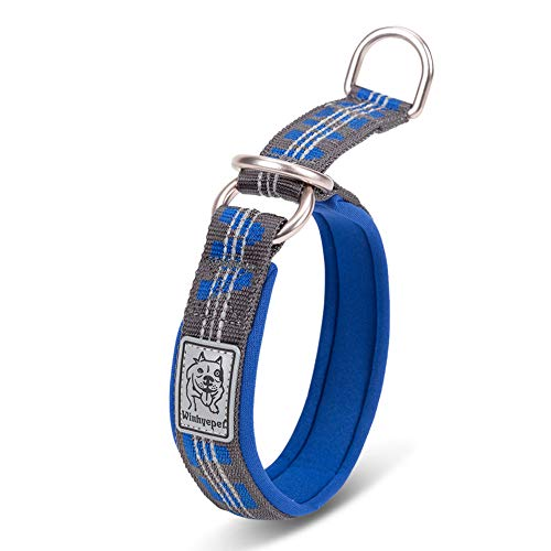 Chai's Choice Best Neoprene Padded Half Choke Training Collar for Large, Medium, Small Dogs. Please Use Sizing Chart at Left.