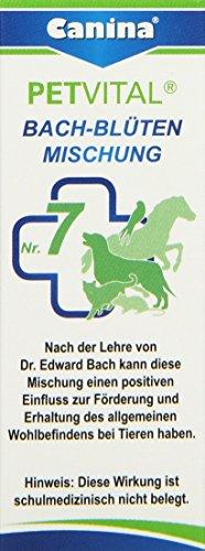 Canina Bach-Blüten No. 7, 1er Pack (1 x 10 g)