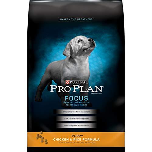 Purina Pro Plan Dry Puppy Food, FOCUS Chicken & Rice Formula - 18 lb. Bag