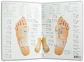 Modern Essentials Reflexology Chart (11