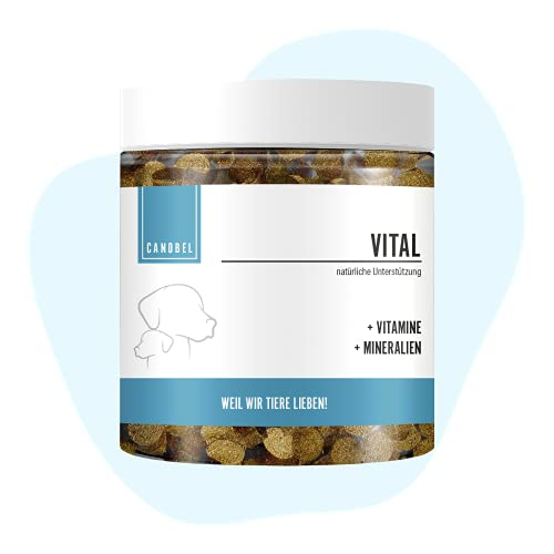 Canobel VITAL Vitamin B Komplex für Hunde & Katzen I B1, B2, B3, B5, B6, B9, B12, K3, D3, Calcium, Folsäure, Zink & Biotin I Fördert das Immunsystem + Nervenfunktionen I Welpen, Adult & Senior