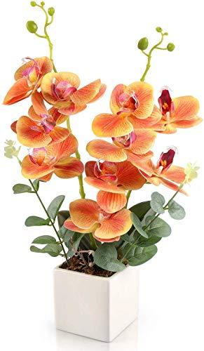 Yobansa Dekorative echte Berührung gefälschte Orchidee Bonsai künstliche Blumen mit Keramik Blumentöpfe Phalaenopsis Blumenarrangements für Home Decoration (Orange)